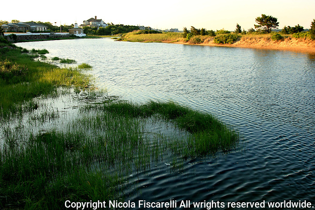 Beautiful landscape of Yarmouth wetlands in Cape Cod  Massachusetts.