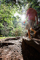 Man walking on a trail near the Pali lookout, Oahu