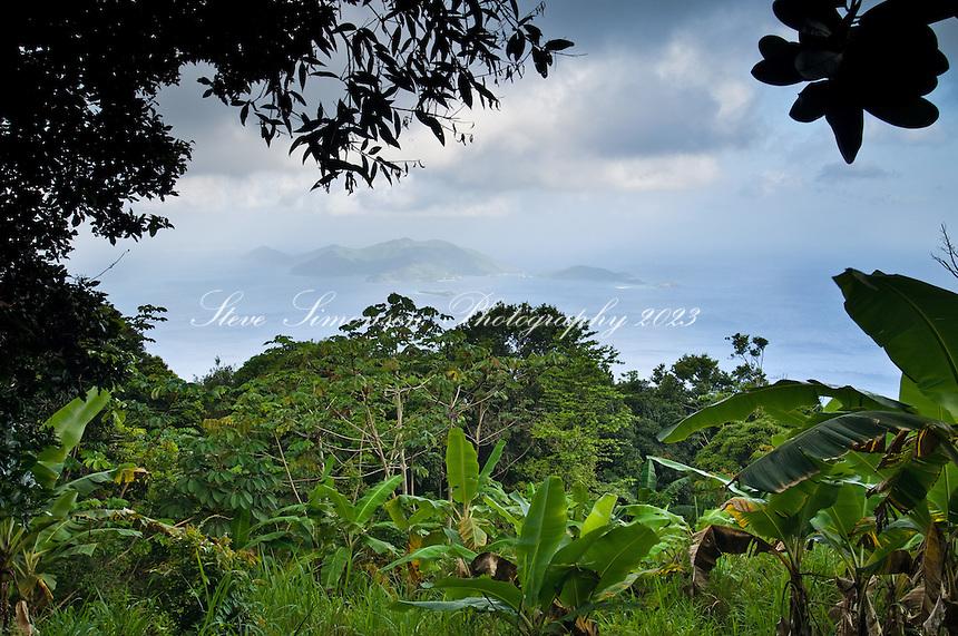 Sage Mountain National Park.Tortola, British Virgin Islands