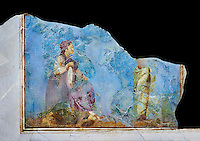 Roman fresco wall decorations from Villas of Rome. Museo Nazionale Romano ( National Roman Museum), Rome, Italy. Against a black background.