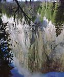 USA, California, Yosemite National Park, El Cap reflecting in the Merced River