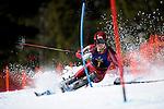 2012 MW DI Skiing