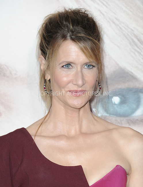 www.acepixs.com<br /> <br /> February 7 2017, LA<br /> <br /> Laura Dern arriving at the premiere Of HBO's 'Big Little Lies' at the TCL Chinese Theatre on February 7, 2017 in Hollywood, California.<br /> <br /> By Line: Peter West/ACE Pictures<br /> <br /> <br /> ACE Pictures Inc<br /> Tel: 6467670430<br /> Email: info@acepixs.com<br /> www.acepixs.com