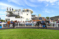 Horses in The Parade Ring during Horse Racing at Salisbury Racecourse on 15th August 2019