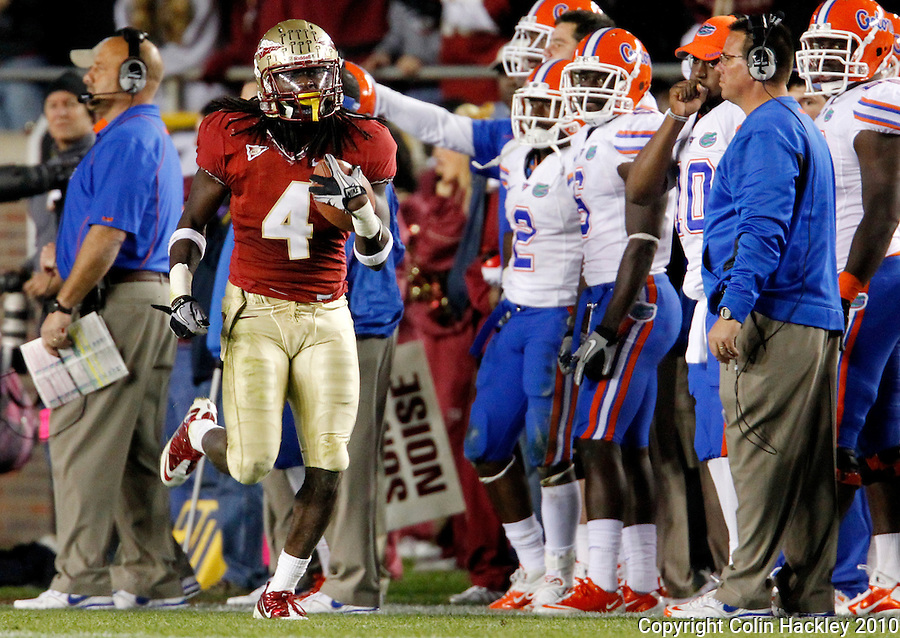 TALLAHASSEE, FL 11/27/10-FSU-UF FB10 CH-Florida State's Terrance Parks heads down field after recovering a Florida fumble on the 12 yard line during fourth quarter action Saturday at Doak Campbell Stadium in Tallahassee. The Seminoles beat the Gators 31-7..COLIN HACKLEY PHOTO