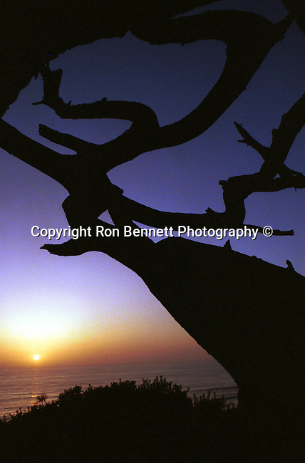 Fine Art Photography, photographs fulfill a creative vision of the artist fine art photography, buy art, limited edition print, buy fine art, travel photography, photo art, prints, fine art, Fine Art Photography by Ron Bennett, Fine Art, Fine Art photography, Art Photography, Copyright RonBennettPhotography.com © Fine Art Photography by Ron Bennett, Fine Art, Fine Art photography, Art Photography, Copyright RonBennettPhotography.com ©