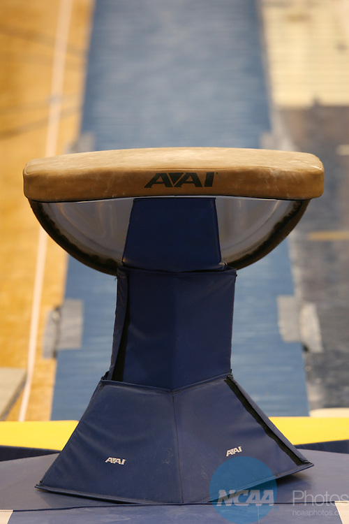 13 APR 2007:  Gymnasts compete during the Division I Men's Gymnastics Championship held at Recreation Hall on the Penn State University campus in State College, PA .  Jamie Schwaberow/NCAA Photos
