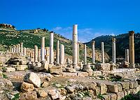 Jordanien, Pella im Jordantal: Saeulen der antiken roemischen Stadt | Jordan, Pella located in the Jordan Valley: Columns of the ruined Roman city