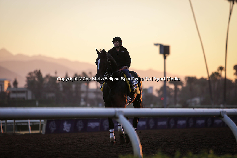 October 28, 2014: Prayer for Relief exercises in preparation for the Breeders' Cup Classic at Santa Anita Park in Arcadia, California on October 28, 2014. Zoe Metz/ESW/CSM