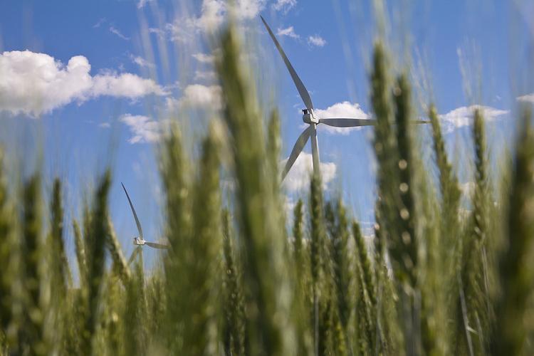 Wind Turbines, Palouse, Oakdale, Whitman County, Eastern Washington, Washington State, Pacific Northwest, United States, renewable energy, wind power, wheat fields, farms, American farms,