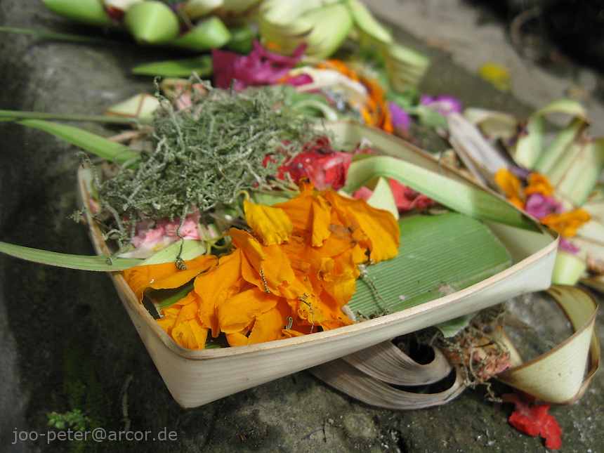 close-up of a typical daily offering, brought out evereywhere in Bali, archipelago Indonesia