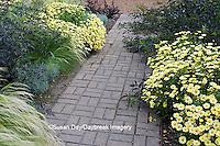 63821-20810 Gardens with Marguerite Daisy (Argyranthemum frutescens), Silver Spike (Helichrysum thianschanicum 'Icicles'), Red Bunny Tails (Penisetum messiacum)  Black Lace Elderberry (Sambucus nigra 'Black Lace') Cantigny, Wheaton, IL