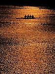 Rowling, detail from lake Ada Ciganlija.Belgrade, summer 2003.foto: Srdjan Stevanovic