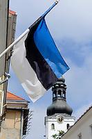 Mariendorm  in Tallinn (Reval), Estland, Europa, Unesco-Weltkulturerbe