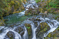 ORCAN_D103 - USA, Oregon, Willamette National Forest, Opal Creek Scenic Recreation Area, Multiple small falls and swift flow of Opal Creek with surrounding old growth forest.