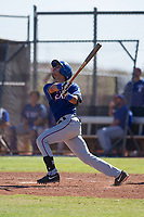 Texas Rangers shortstop Diosbel Arias (73) follows through on his swing during an Instructional League game against the San Diego Padres on September 20, 2017 at Peoria Sports Complex in Peoria, Arizona. (Zachary Lucy/Four Seam Images)