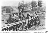 A Pagosa Lumber Co. log train led by their 2-truck Shay, #4, posing on a curved trestle with the train crew.  The log cars appear to be of the New Mexico Lumber Co. type.<br /> Pagosa Lumber Co.  near Pagosa Springs, CO  Taken by Allan, William - 1912