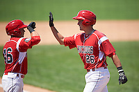 Batavia Muckdogs catcher Blake Anderson (26) high fives third baseman Alex Fernandez (46) after hitting a home run during a game against the Williamsport Crosscutters on July 16, 2015 at Dwyer Stadium in Batavia, New York.  Batavia defeated Williamsport 4-2.  (Mike Janes/Four Seam Images)