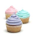 Cupcakes from Wonderland Bakery. Portfolio only.