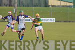 Kerry's John Griffin and UL's Seamus Hickey.