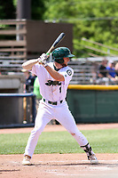 Beloit Snappers designated hitter Max Schuemann (8) at bat during a Midwest League game against the Cedar Rapids Kernels on June 2, 2019 at Pohlman Field in Beloit, Wisconsin. Beloit defeated Cedar Rapids 6-1. (Brad Krause/Four Seam Images)