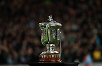 The Bledisloe Cup on display during the Bledisloe Cup and Rugby Championship rugby match between the New Zealand All Blacks and Australia Wallabies at Eden Park in Auckland, New Zealand on Saturday, 25 August 2018. Photo: Simon Watts / lintottphoto.co.nz