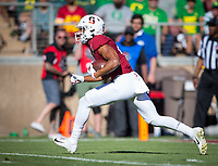 Stanford, CA - September 21, 2019: Michael Wilson at Stanford Stadium. The Stanford Cardinal fell to the Oregon Ducks 21-6.