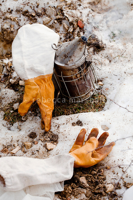 A smoker and beekeeping gloves, Seranon, Alpes Maritimes, France, 18 February 2014. Beekeeper Amanda Dowd smokes sprigs of lavender, cypress and bay leaves to calm the bees before working with the hives.