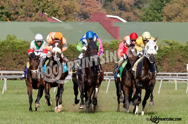 School House winning The With Anticipation at Delaware Park on 9/26/13