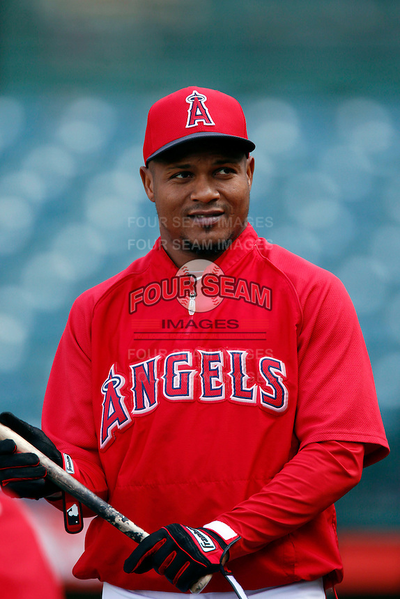Erick Aybar #2 of the Los Angeles Angels before a game against the Chicago White Sox at Angel Stadium on May 17, 2013 in Anaheim, California. (Larry Goren/Four Seam Images)
