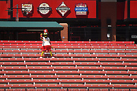 25th July 2020, St Louis, MO, USA;  Fred Bird, the Cardinals mascot, leads cheers from an empty outfield bleachers during a Major League Baseball game between the Pittsburgh Pirates and the St. Louis Cardinals