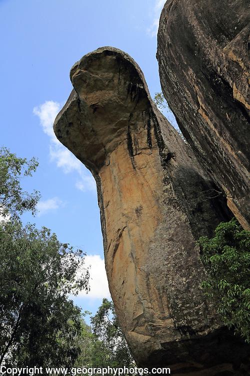 Cobra Hood Cave rock in the palace Boulder Gardens, Sigiriya, Central Province, Sri Lanka, Asia