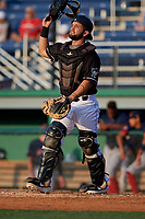 Batavia Muckdogs catcher Michael Hernandez (29) during a NY-Penn League game against the Lowell Spinners on July 10, 2019 at Dwyer Stadium in Batavia, New York.  Batavia defeated Lowell 8-6.  (Mike Janes/Four Seam Images)