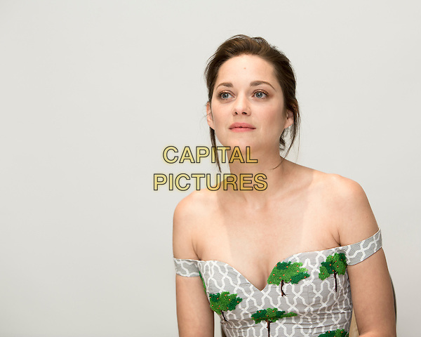 CALIFORNIA - NOVEMBER 6: Portrait of Marion Cotillard promoting &quot;Two Days, One Night&quot; in California on November 6, 2014. **Special Fees Apply** <br /> CAP/MPI/GAL<br /> &copy;GAL/MPI/Capital Pictures