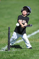 T-BALL GIANTS