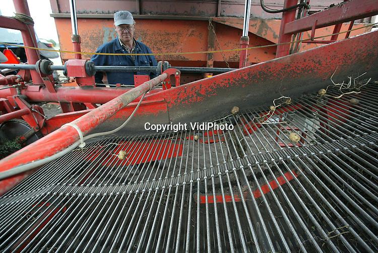 Foto: VidiPhoto..SCHAARSBERGEN - Veel krielen bij akkerbouwer Jan Hoogendam in Schaarsbergen, ondanks de smalle matten.
