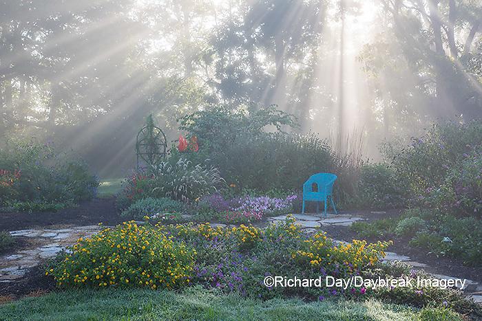 63821-23711 Sun rays in fog in flower garden, Marion Co., IL