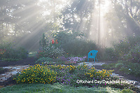 63821-23711 Sun rays in fog in flower garden, Marion Co., IL