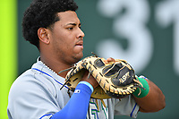 Catcher Meibrys Viloria (4) of the Lexington Legends warms up prior to a game against the Greenville Drive on Wednesday, April 12, 2017, at Fluor Field at the West End in Greenville, South Carolina. Greenville won, 4-1. (Tom Priddy/Four Seam Images)