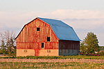 Red weathered wooden barn, summer, rural Mich.