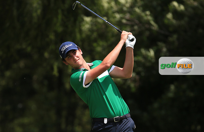 Renato Paratore (ITA) building a low score during Round Three of the 2016 BMW SA Open hosted by City of Ekurhuleni, played at the Glendower Golf Club, Gauteng, Johannesburg, South Africa.  09/01/2016. Picture: Golffile | David Lloyd<br /> <br /> All photos usage must carry mandatory copyright credit (&copy; Golffile | David Lloyd)