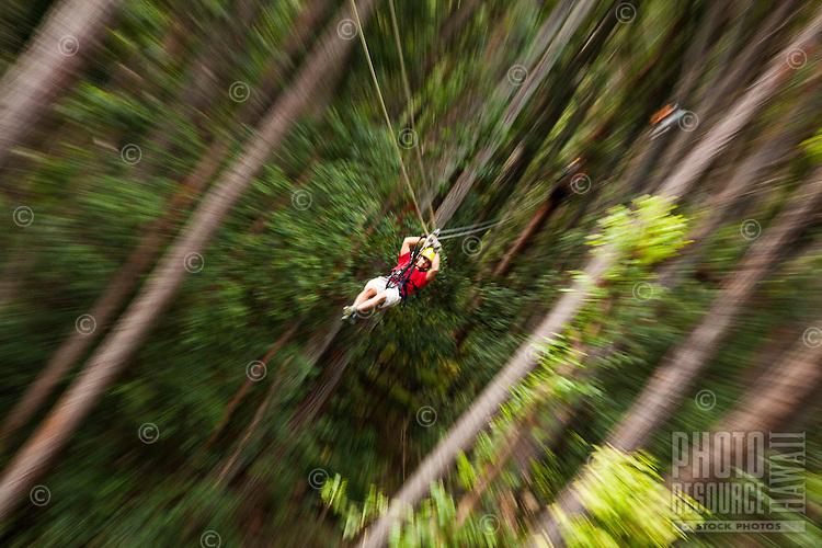 Zip-lining through the air and rainforest with Kohala Ziplining in North Kohala on the Big Island.