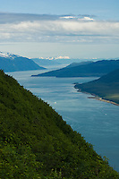 View of Gastineau Channel from Mt. Roberts
