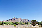 Jebel Kissane mountains with oasis, Draa valley, Morocco.