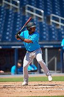 Miami Marlins Christopher Torres (48) at bat during an Instructional League game against the Washington Nationals on September 26, 2019 at FITTEAM Ballpark of The Palm Beaches in Palm Beach, Florida.  (Mike Janes/Four Seam Images)