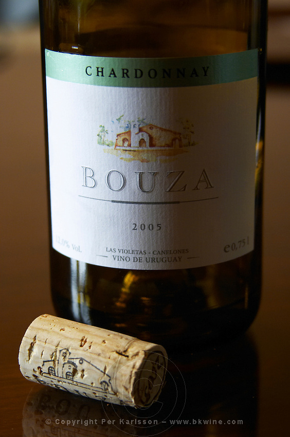 Bouza Chardonnay in side light contrast with a cork. Bodega Bouza Winery, Canelones, Montevideo, Uruguay, South America