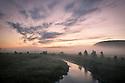River scene at dawn, Northumberland, UK. July.