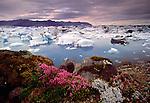 Breioamerkurjokull glacier region, Iceland