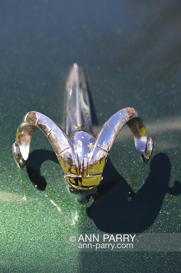 Floral Park, New York, U.S. - April 27, 2014 - A metallic green 1953 Dodge, with the stylized chrome Ram hood ornament shown in detail, is exhibited at the 35th Annual Antique Auto Show at Queens Farm.