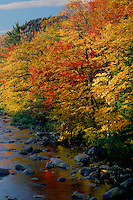 Swift River<br />